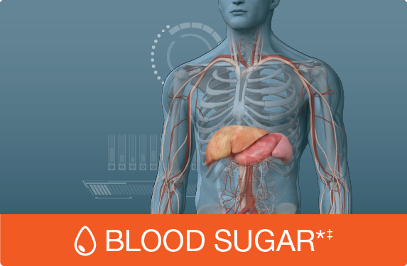 Picture for category Blood Sugar