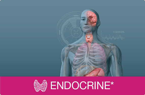 Picture for category Endocrine