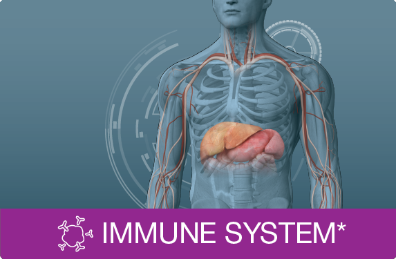 Picture for category Immune System