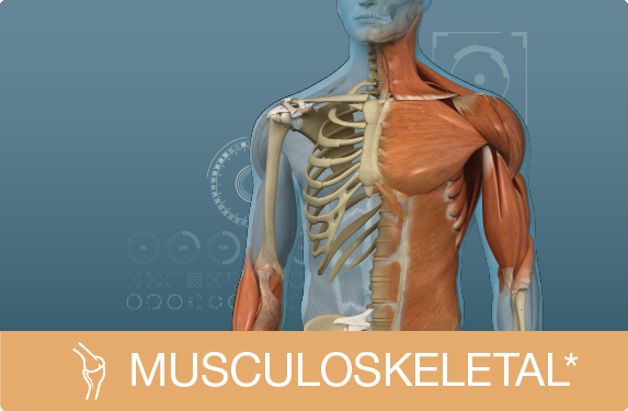 Picture for category Musculoskeletal